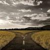CrossroadsBand