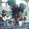 gavin1974