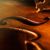 fiddlebee
