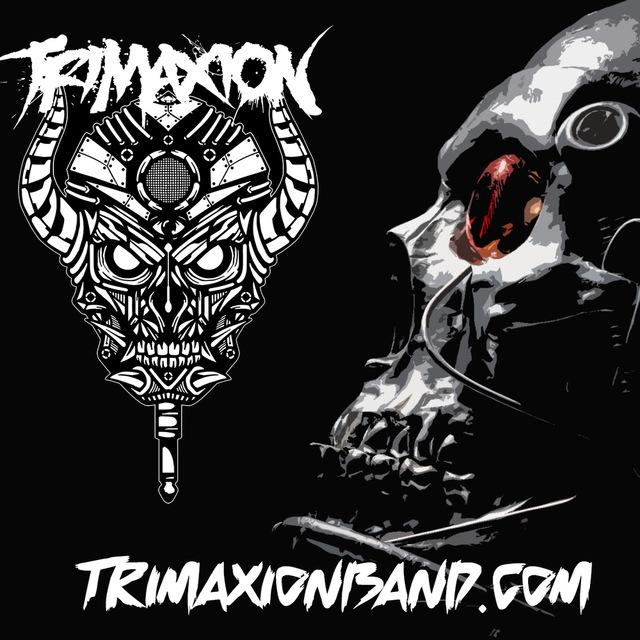 Trimaxion