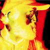 Billie Jorts