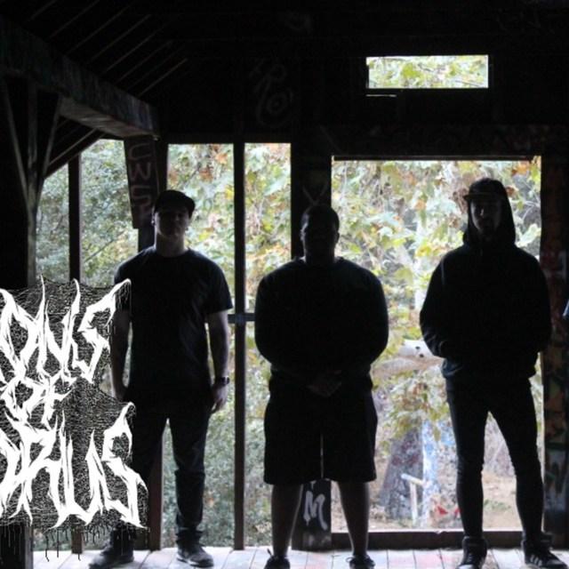 DarkSkiesProductions