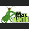 david-Band Mantis