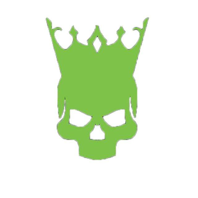 Decibel of Reign Booking & Entertainment Llc.