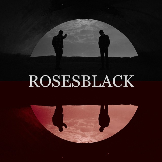 RosesBlack