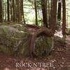 RockNTree