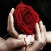 Crimson_Killers4321