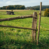 Dirtwood Meadows