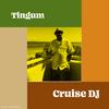 Cruise DJ
