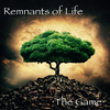 Remnants of Life