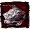 Dead Roses In Full Bloom