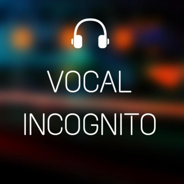 VocalIncognito