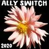 Ally Switch