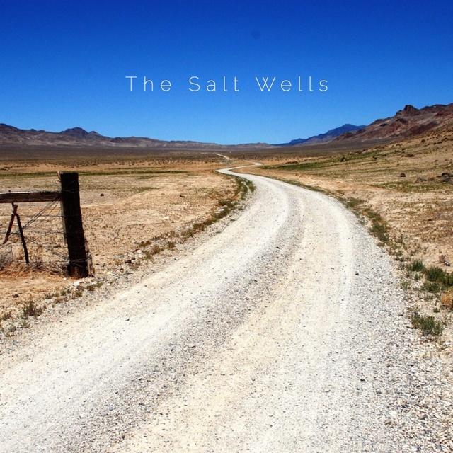 thesaltwells