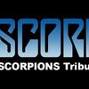 Scorpions Tribute Band