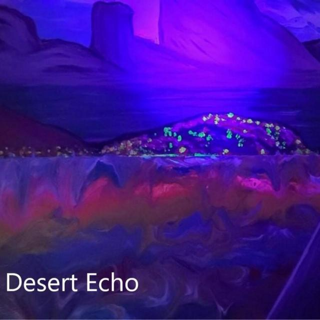 Desert Echo