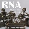 RNA Music