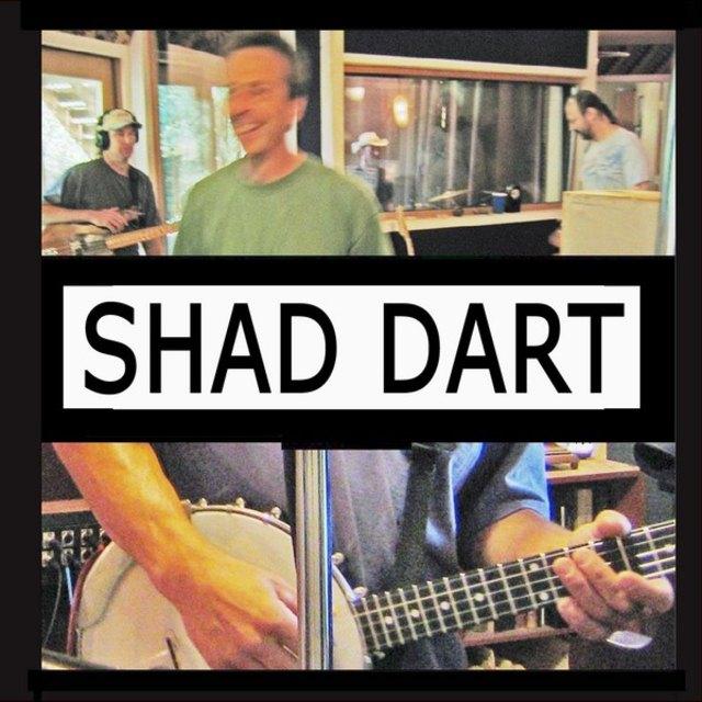 shad dart