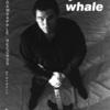 Jonah Whale