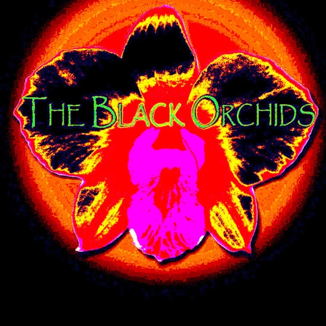 The Black Orchids