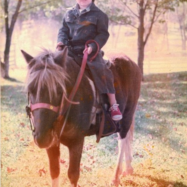 brnz1971