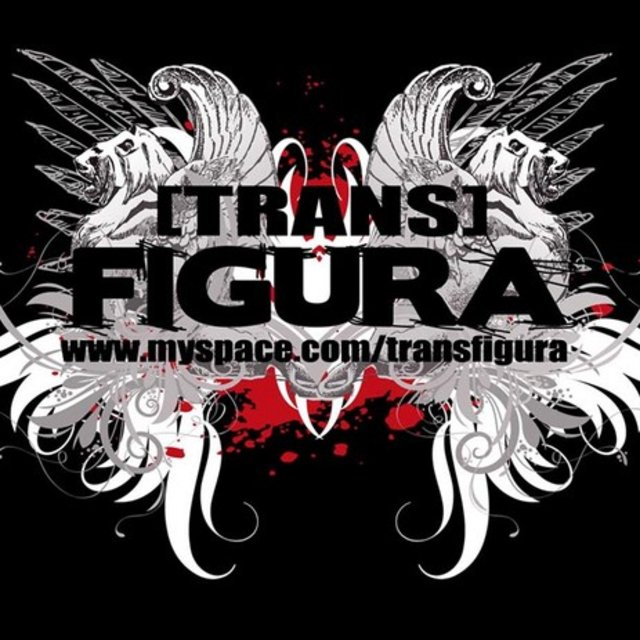 TRANSFIGURA