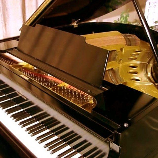 Pianoman69