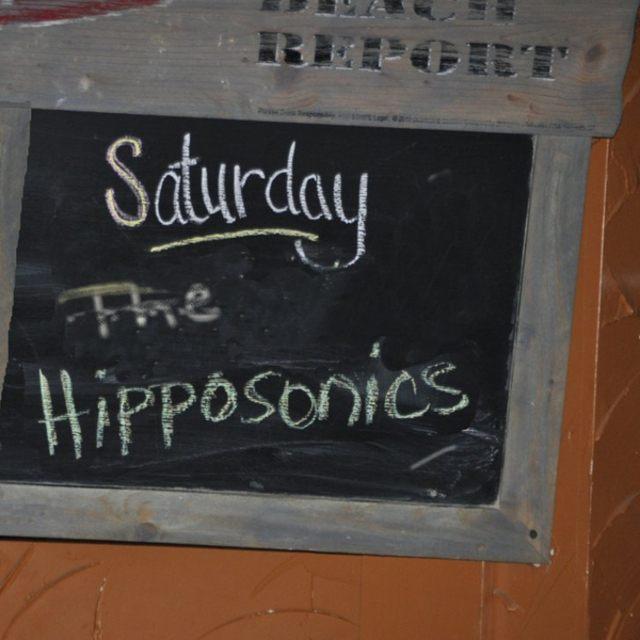 The Hipposonics