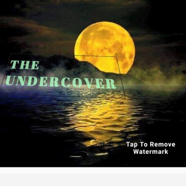THEUNDERCOVER
