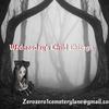 Wednesdays Child Chicago