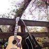RECORDING STUDIO/REPAIR SHOP/Musician