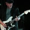 Gitar Gary