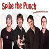 spikethepunch