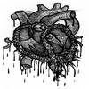 Second _Heartbeat