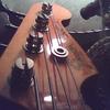 Free flowing bassist