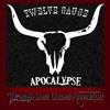Twelve Gauge Apocalypse / Currently on Hiatus
