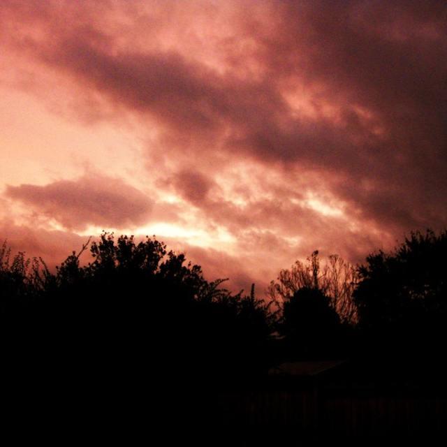 Sunset Euphoria