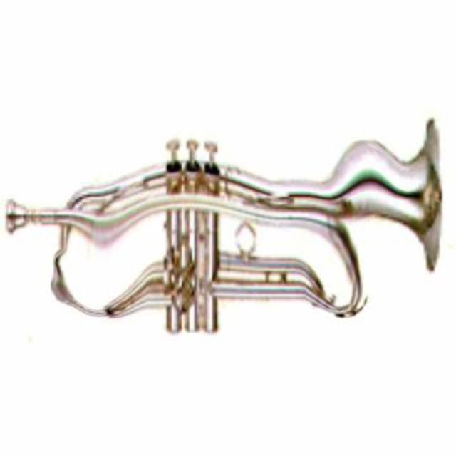 Cyberhorn