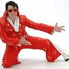Various Elvis