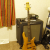 bassist2011