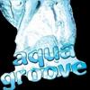 Aqua Groove
