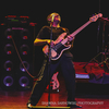 Fender Fretless Bassman