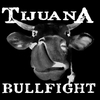 Tijuana Bullfight