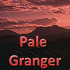 The Pale Granger Band
