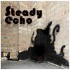 steady echo