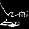White Bird Studio