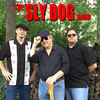 TheSlyDogBand