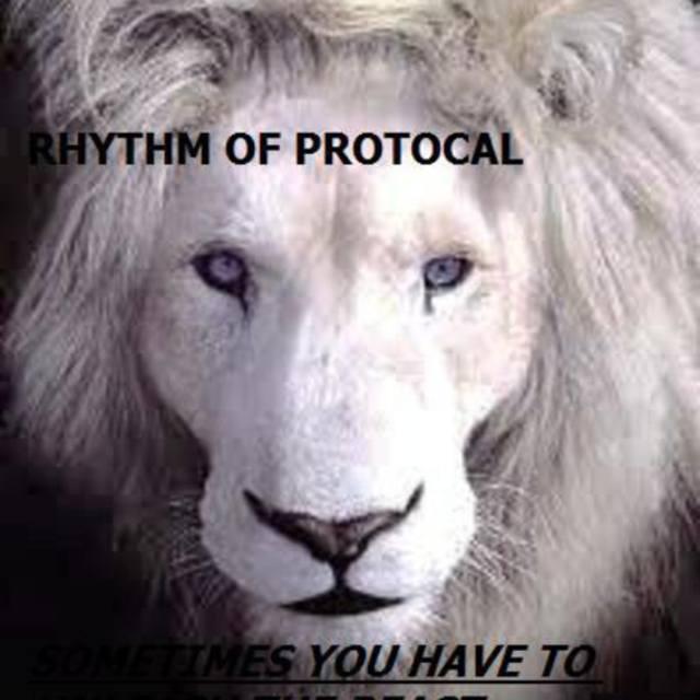 Rhythm of Protocal