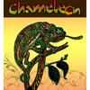 The Chameleon Band
