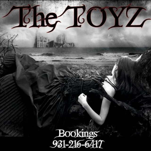 The TOYZ - Band in Clarksville TN - BandMix com